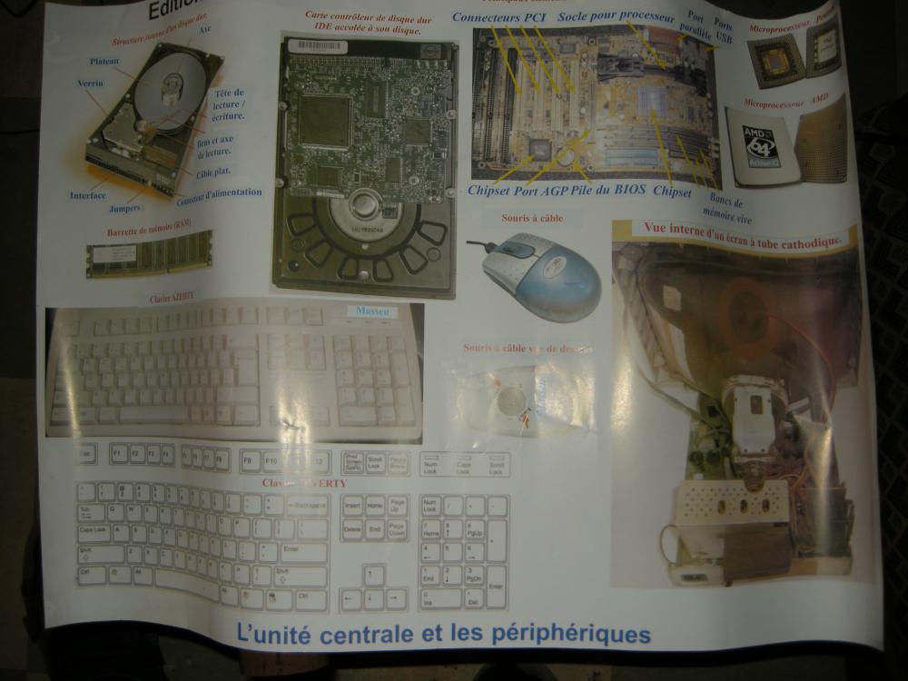 http://cameroon.betacantrips.com/wp-content/uploads/2010/10/DSCN4615-scale0.25.jpg